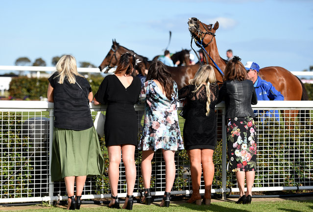 Race goers watch the last race after the Geelong Cup on Geelong Cup day at Geelong Racecourse in Mel