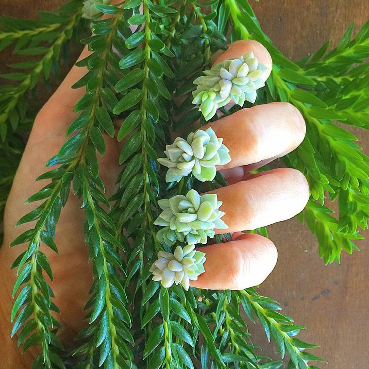 Succulent Nails - Wearing colorful living plants on your fingers