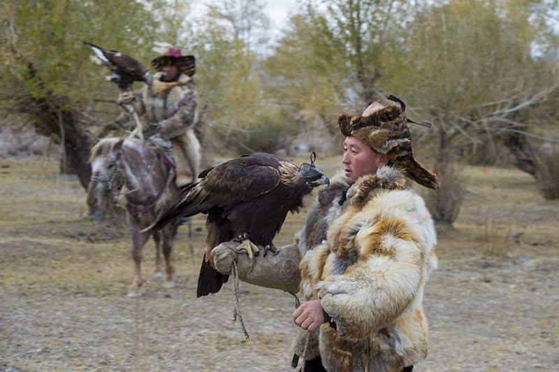A Kazakh eagle hunter with his golden eagle.
