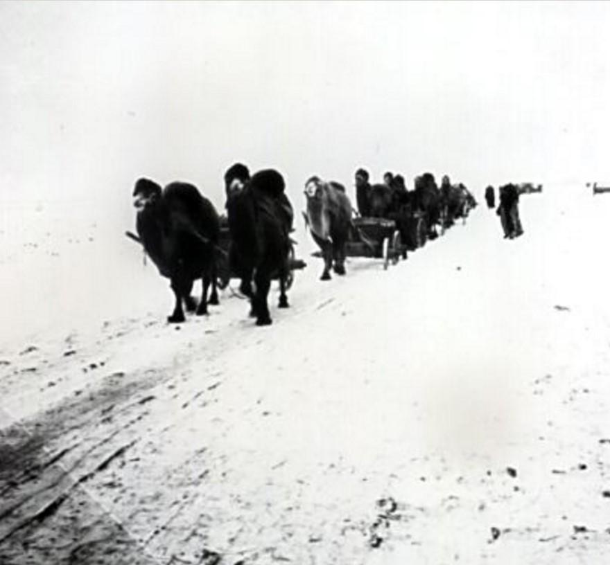 Беженцы из деревень Самарского региона