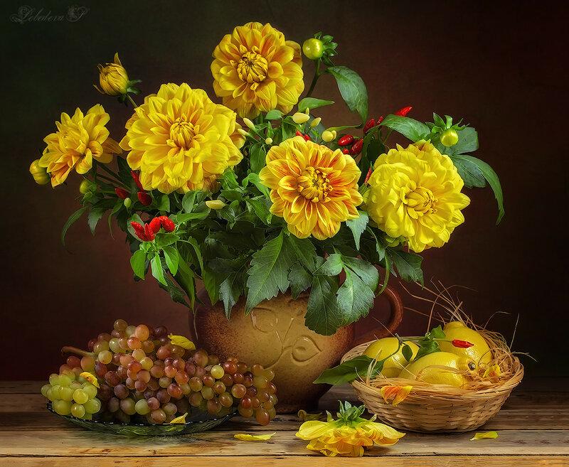 Жёлтые георгины
