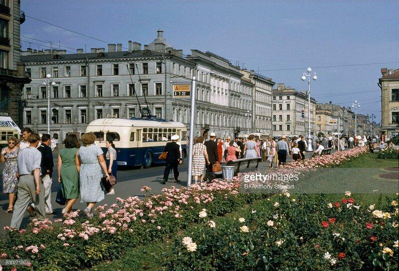 1959 Nevsky by B. Anthony Stewart2.jpg