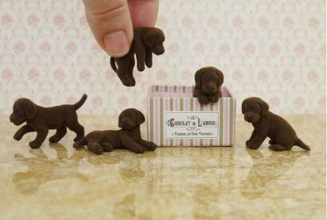 Керри Педжути: миниатюрные композиции с животными