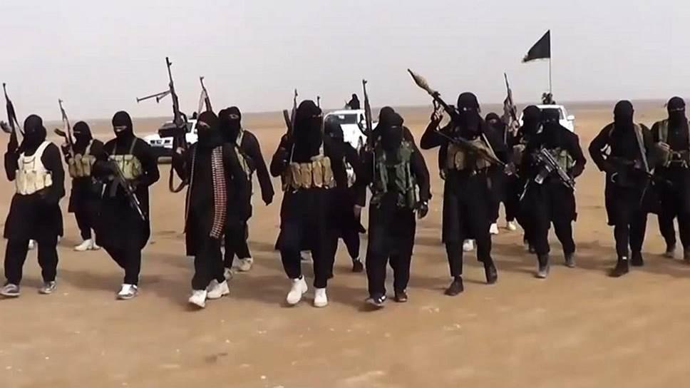 Штатская агентура предупредила о вероятных атаках «Аль-Каиды» накануне выборов