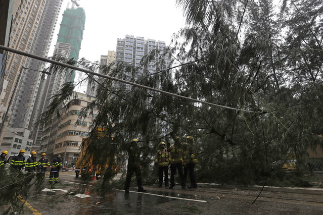 Firemen remove the tree branches broken by strong winds caused by Typhoon Haima in Hong Kong, Friday