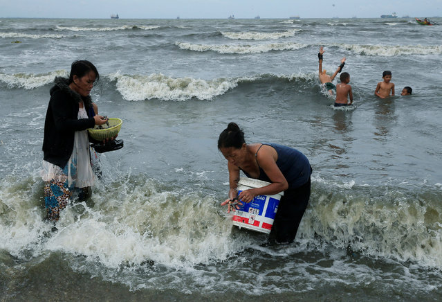 Residents take advantage of the gloomy weather to collect washed up clams brought by crashing waves