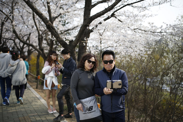 A Look at Life in Seoul (34 pics)