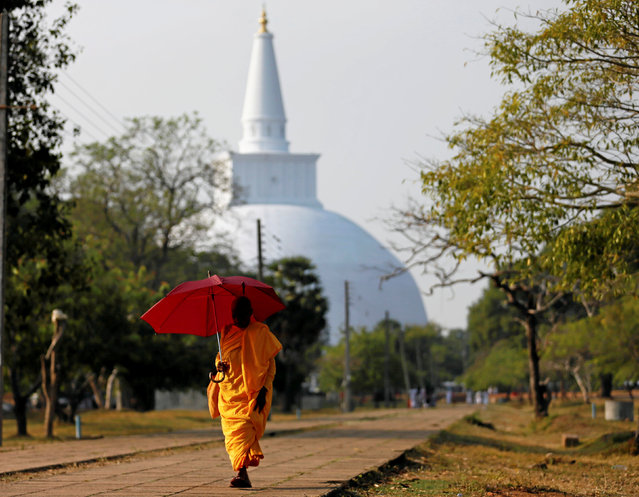 A Buddhist nun walks along a path as a stupa is seen at a temple in Anuradhapura, Sri Lanka October