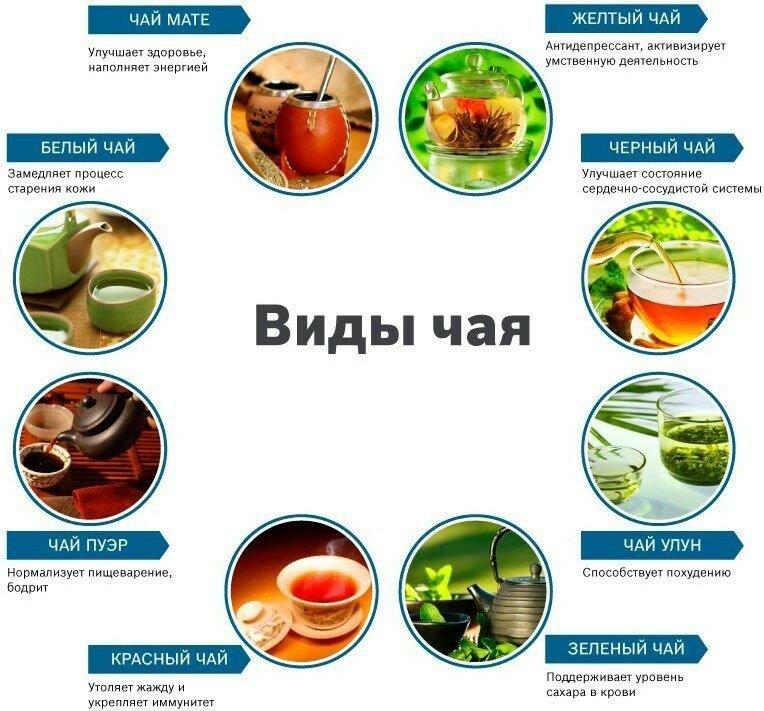 https://img-fotki.yandex.ru/get/196237/60534595.13e9/0_1a56bf_5ff1bc1b_XL.jpg