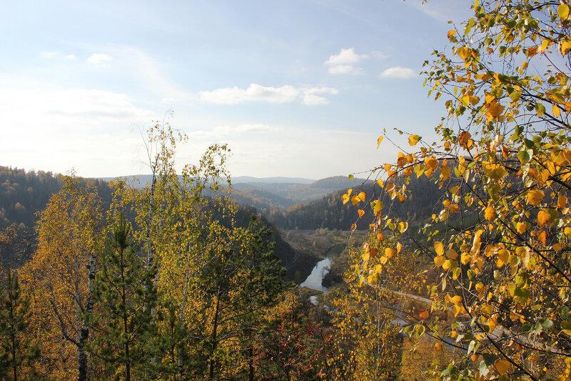 Жёлтые берёзы на фоне холмов Южного Урала