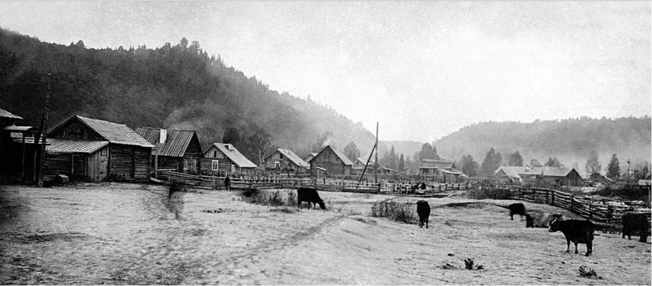 Спецпоселок Сухая Атя. Общий вид поселка трудпоселенцев