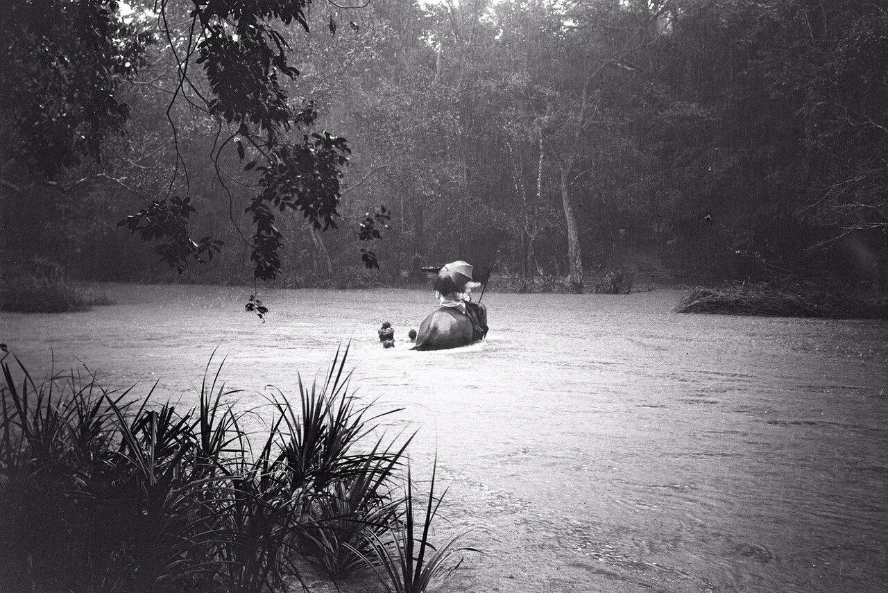 99. Пересечение реки Гал-Оя на слонах