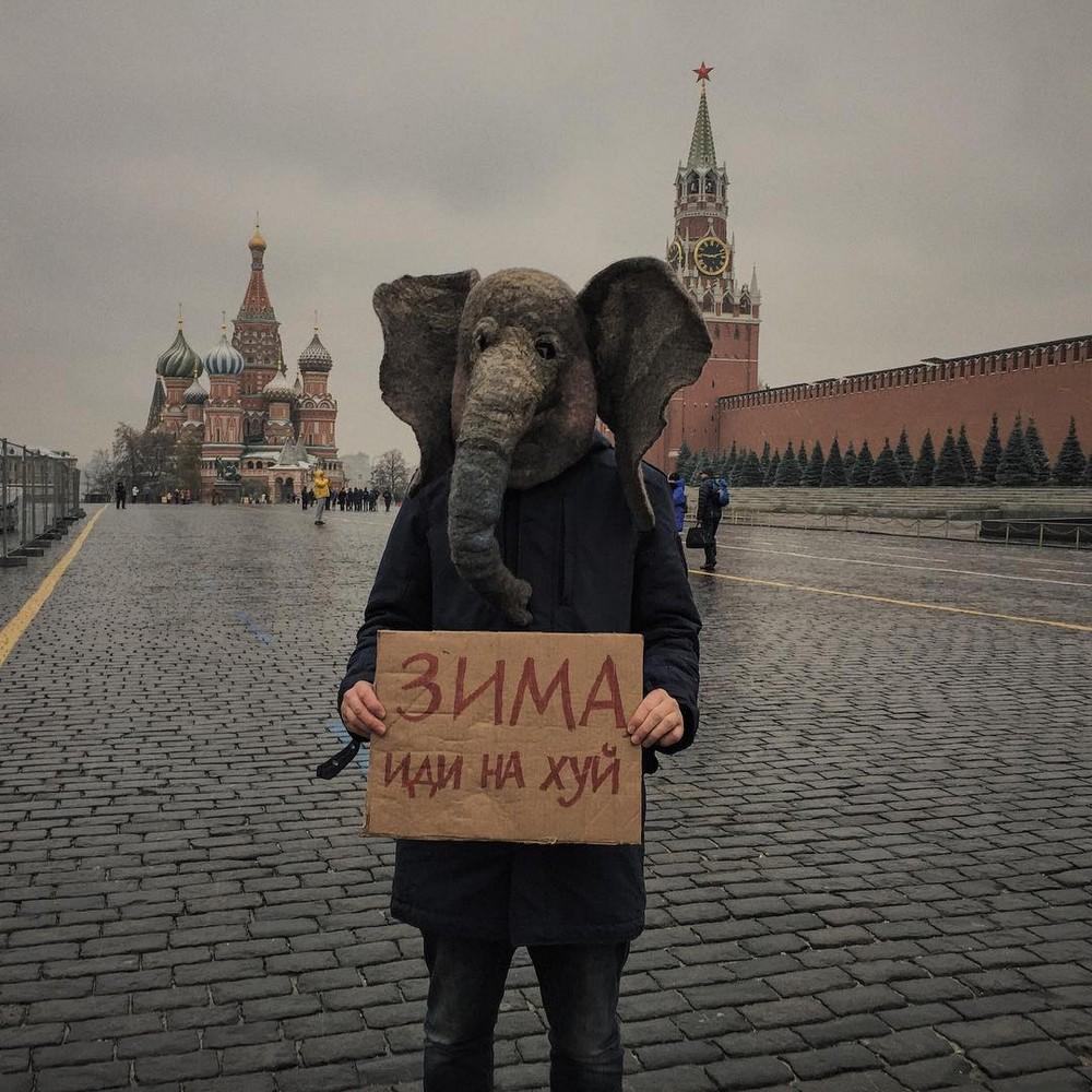 Печальный Instagram человека с головой слона