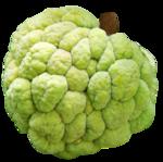 Нойна (сахарное яблоко) (3).png