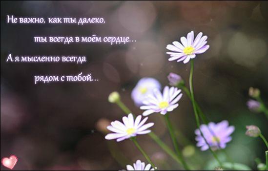 Неважно как ты далеко, ты всегда в моем сердце. А я мысленно всегда рядом с тобой