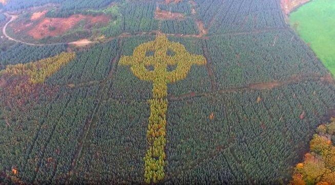 Лесной кельтский крест
