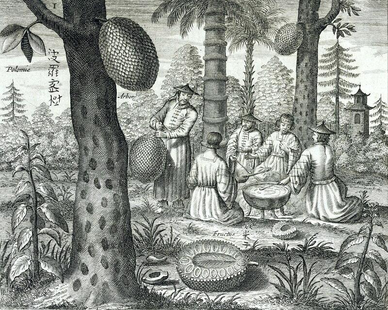 сцена из жизни китайцев в «Иллюстрированной энциклопедии Китайской Империи»