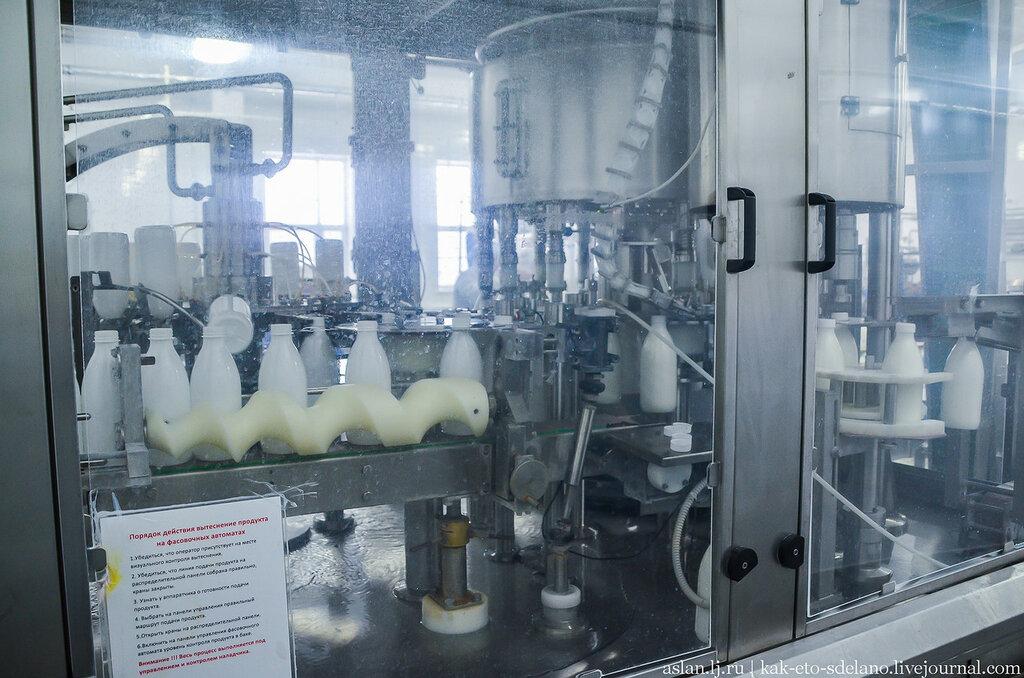 Как братья Чебурашкины производят молочные продукты
