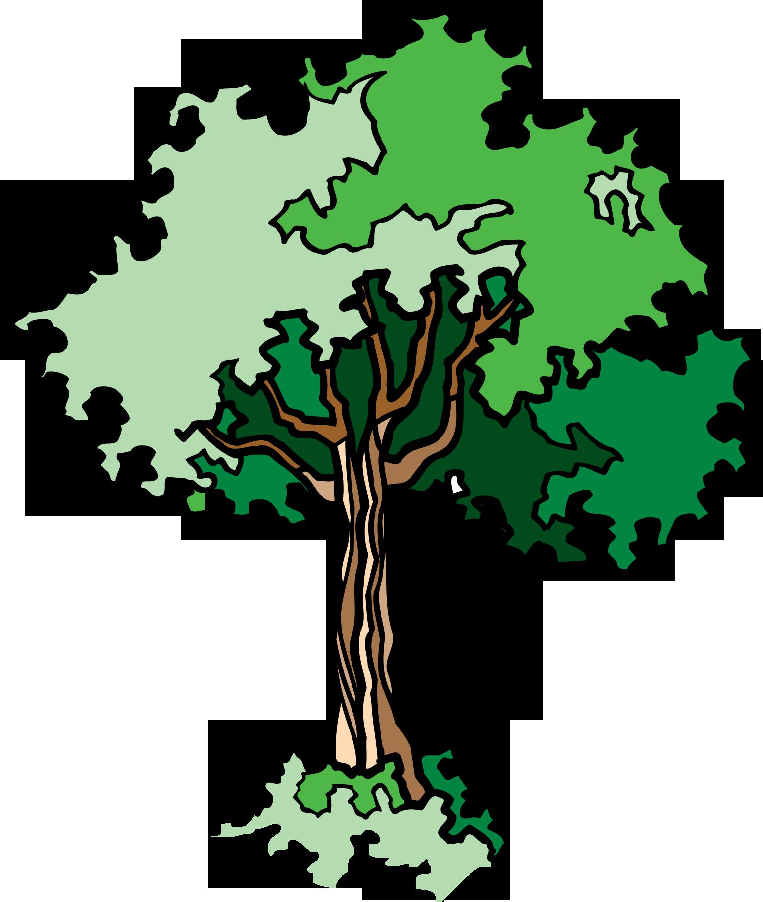 14 мая Всероссийский день посадки леса. Дерево