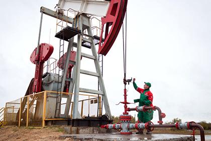 Новое нефтяное месторождение найдено в республики Белоруссии