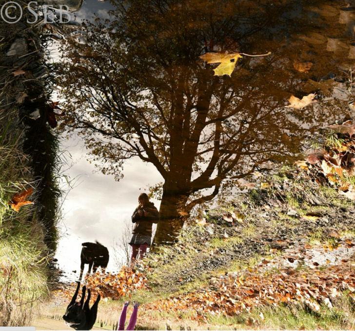 На фотографии — отражение Каи и любимца семьи черного лабрадора.