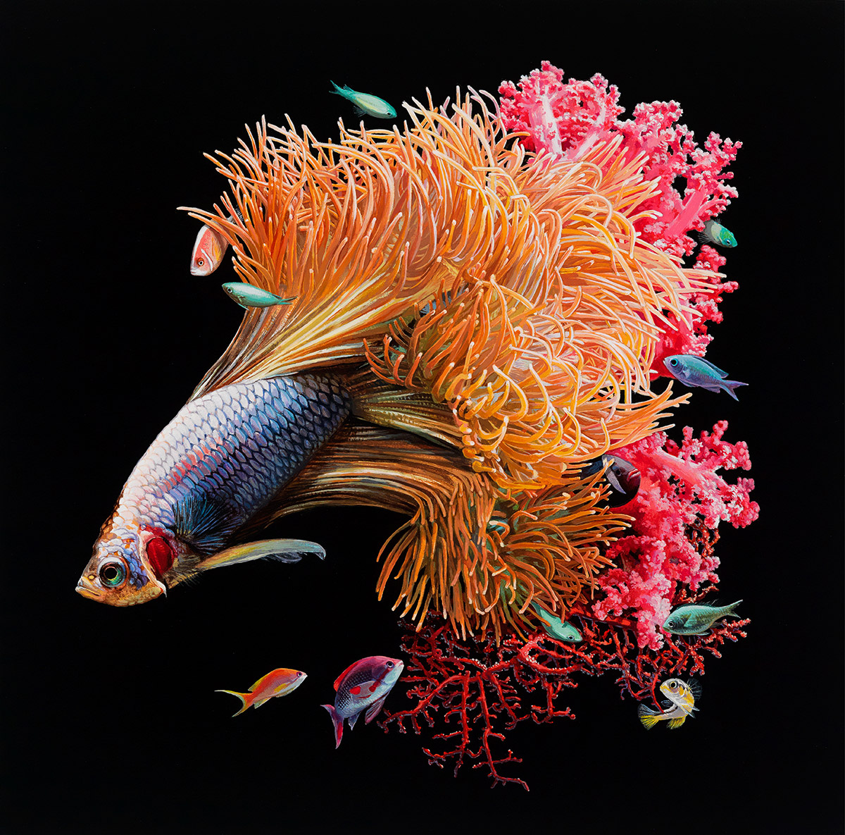 Hyper-Realistic Fish Paintings by Lisa Ericson