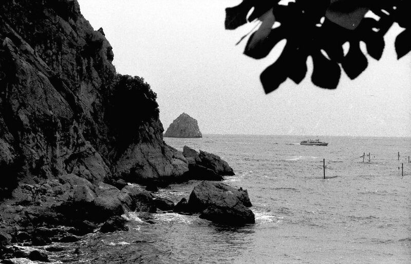 НАШ АДРЕС СОВЕТСКИЙ СОЮЗ.Крым, Артек, 1987 год. Фото Н. Бродяного 001.jpg