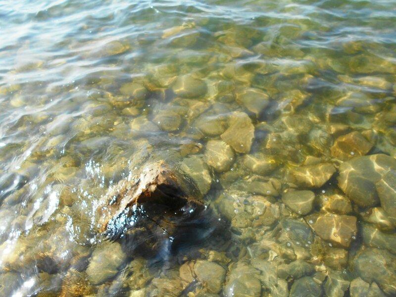 Прозрачность мартовской спокойной воды Азовского моря ... DSCN1279.JPG