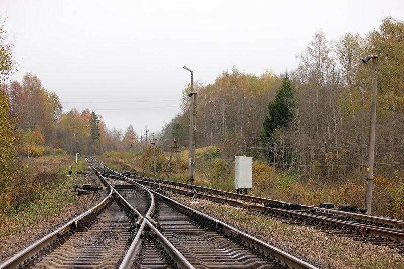 Вострочные стрелки станции Гарнея, вид на Себеж