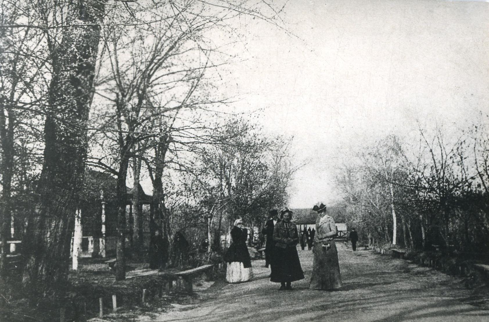 Бульвар в Окском парке
