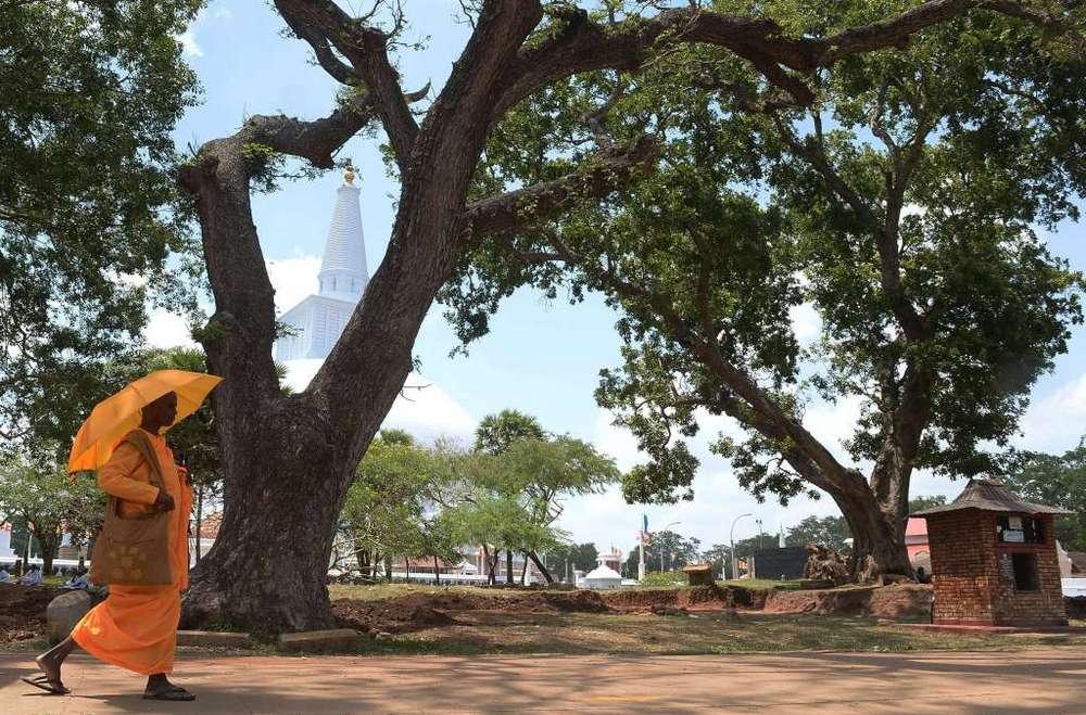 SRI LANKA-RELIGION-BUDDHISM