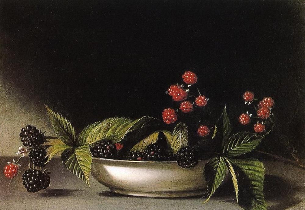 Рафаэль Пил. Ежевика. 1813