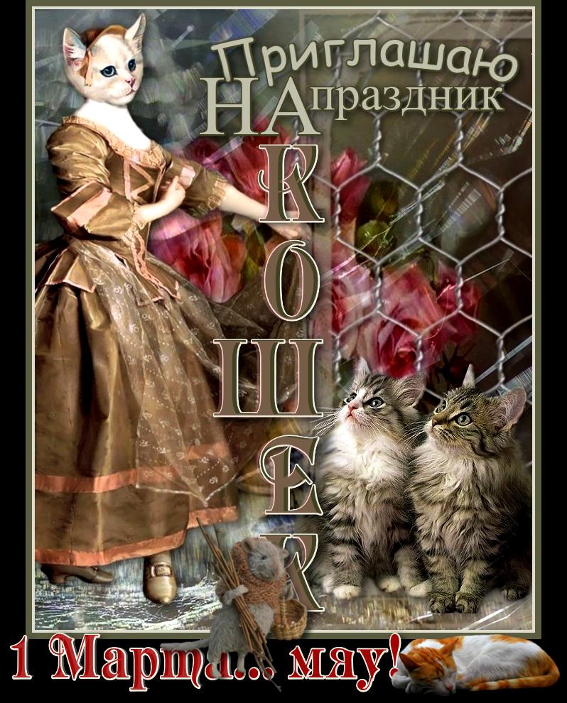 я-праздник-кошки-1 ИN.jpg