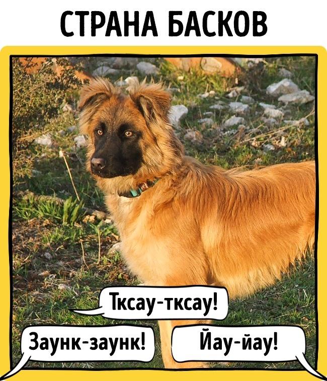 Как лают собаки вразных странах мира