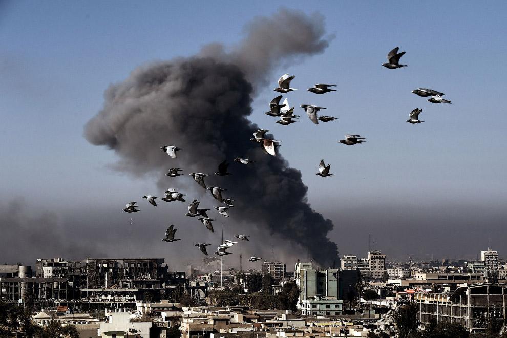 3. Иракский вертолет обстреливает ИГИЛ на окраине Мосула. (Фото Goran Tomasevic | Reuters):