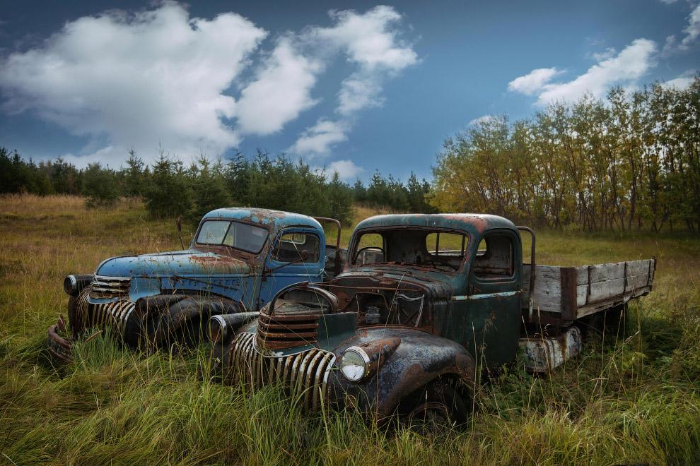 6. Природа почти победила Buick Roadmaster 53 года выпуска. (Фото Robert Kahl):