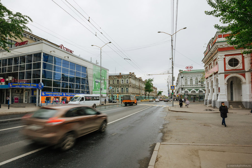 14. Каштаны! Стоит признать, что Саратов — это очень зеленый город. Местами мне казалось, что я