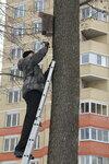 Международный день птиц в благочиниях Московской епархии
