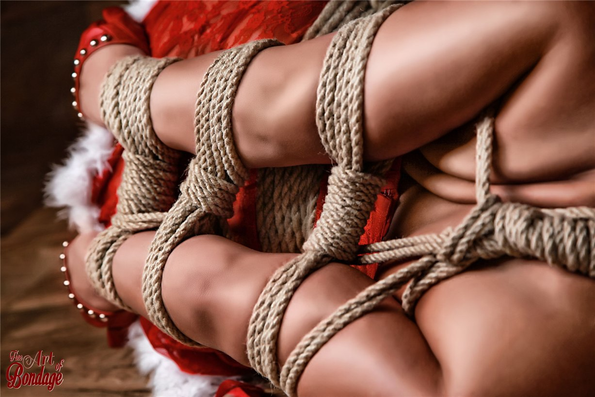 Связанная Снегурочка / Merry Christmas by Rod Meier / Fine Art of Bondage