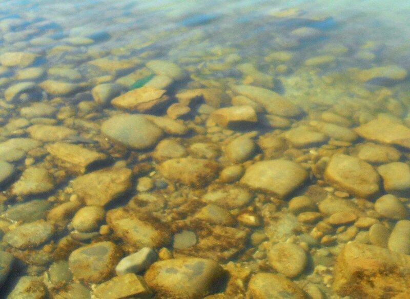 Прозрачность мартовской спокойной воды Азовского моря ... DSCN1262.JPG