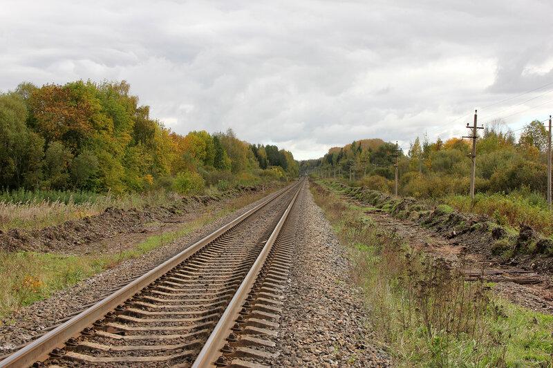 Место, где были боковые пути экс-станции Сменово, вид от переезда на Сонково