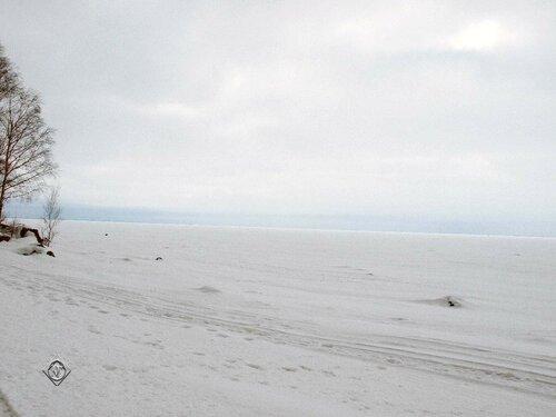 Белезна Финского залива