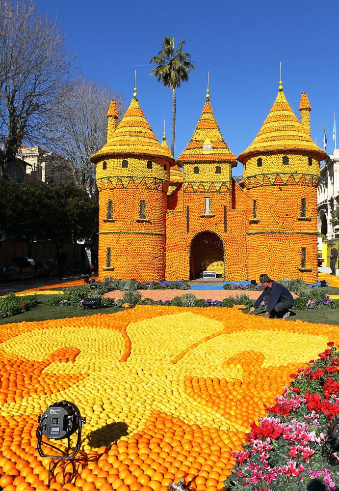 7. Рабочий раскладывает апельсины и лимоны у фруктового замка в Ментоне во время лимонного фестиваля
