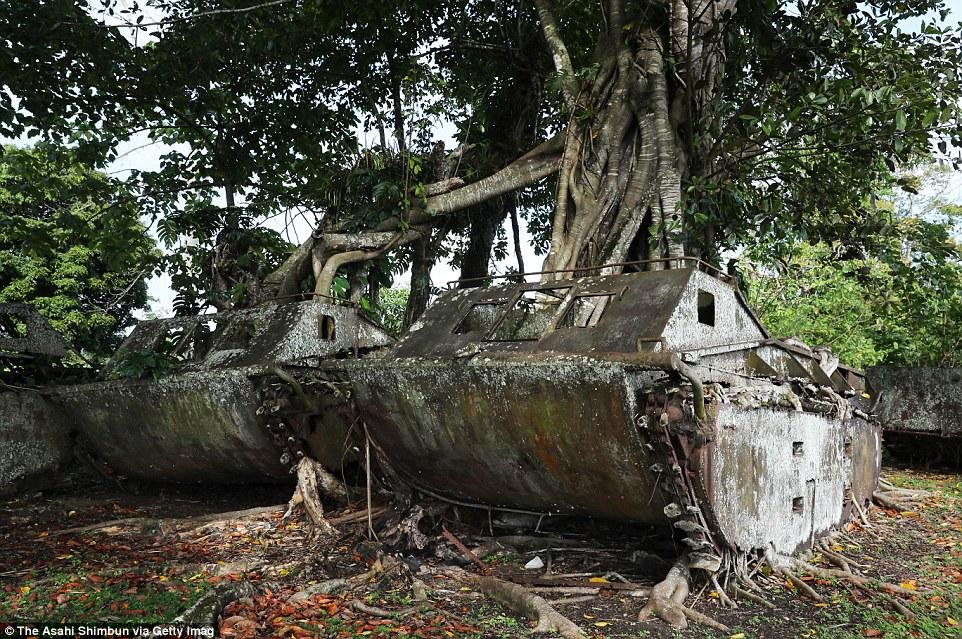То, что осталось от американских вездеходов-амфибий в джунглях.