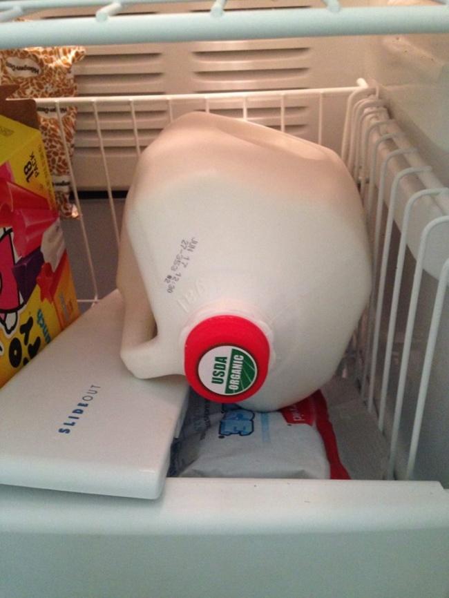 © Ana Belaval  Купили 4литра молока, атут пора ехать вотпуск? Оно непропадет! Молоко можно