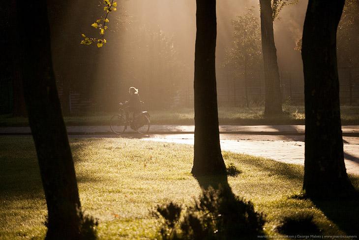 В Амстердаме даже не центральные жилые районы очень аккуратные, с хорошей архитектурой, дорожками и