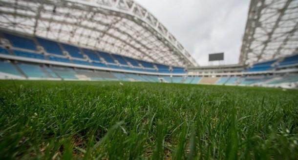 Сборные РФ иБельгии пофутболу сыграют настадионе вСочи