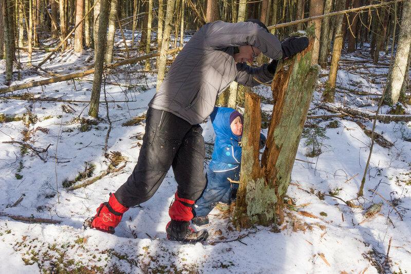 папа и ребенок играют в зимнем лесу