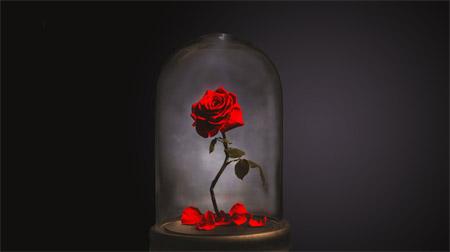 Роза в стекле от компании Forever Rose