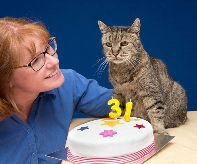 Самому старому в мире котику исполнился 31 год (7 фото)
